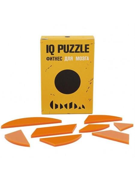 Головоломка IQ Puzzle Figures, круг